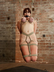39;s picks: ariel x,domination,fingering,handler,humiliation,rope bondage,straight,submission,suspension,vaginal penetration,rope bondage,boobs,suspension,torture
