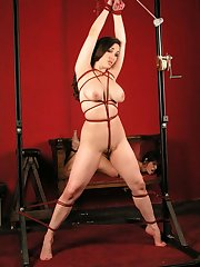 Hot nude pic bondage in rope woman