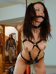 Bdsm sub bondage tied gagged